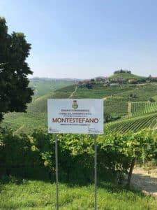 barbaresco montestefano vins italiens