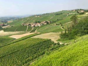 caviste en vin italien à proximité toulouse