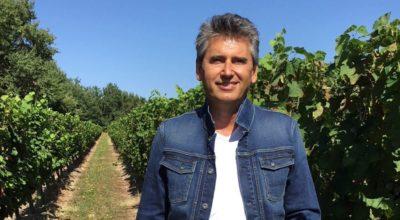caviste toulouse l'union winebox prestige patrick moulene
