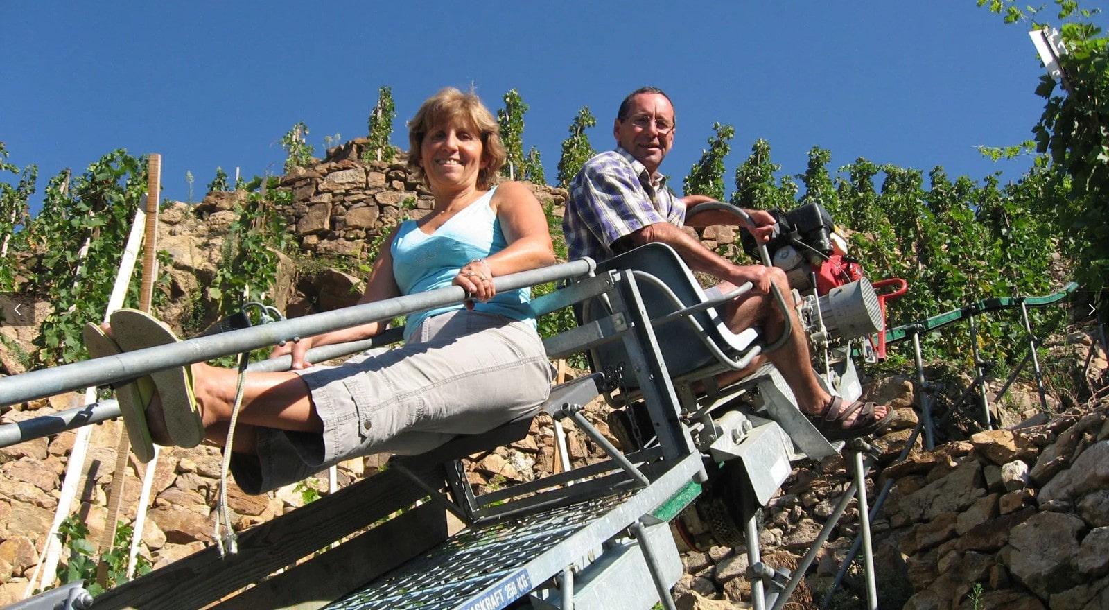 vigne combard en côte-rôtie de julien barge